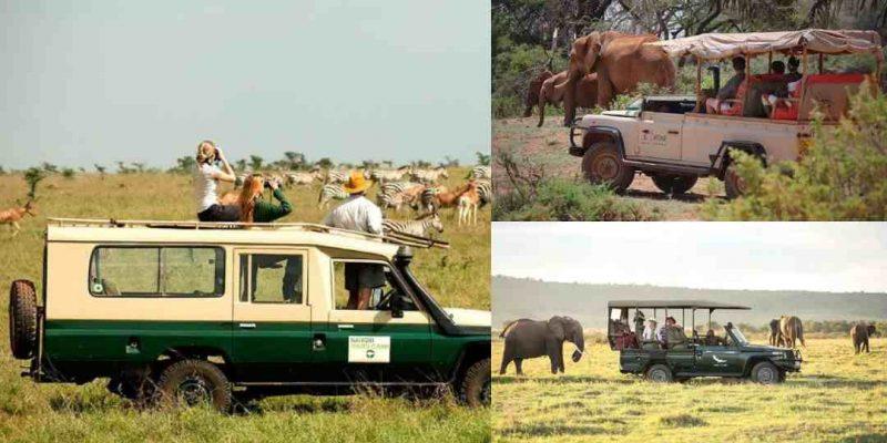 7 Best Safaris in Kenya For Fun-Filled Adventure