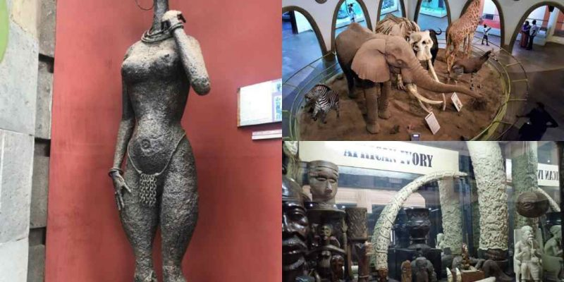 8 Stunning Museums in Nairobi You Should Visit
