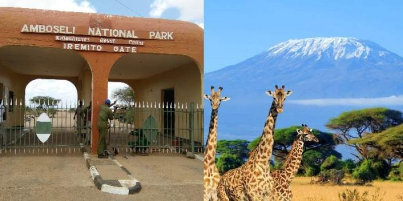 6 Reasons Why You Must Visit Amboseli National Park