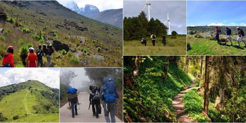 List Of The Best Hiking & Trekking Tour Companies In Kenya