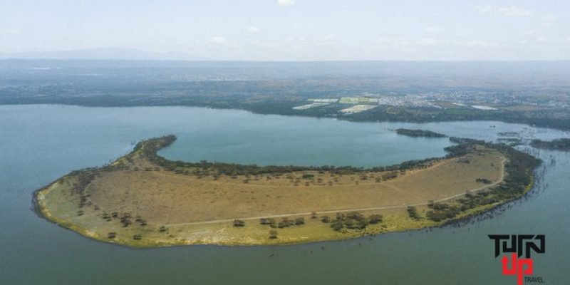 Top Things To Do In Lake Naivasha's Crescent Island