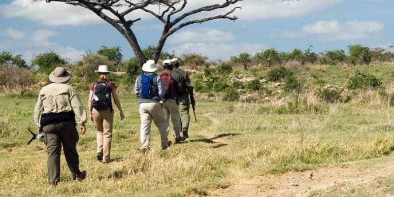 Types of Walking Safaris You Should Experience In Kenya