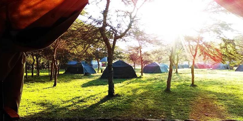 A Review Of Shegadia Campsite Naivasha