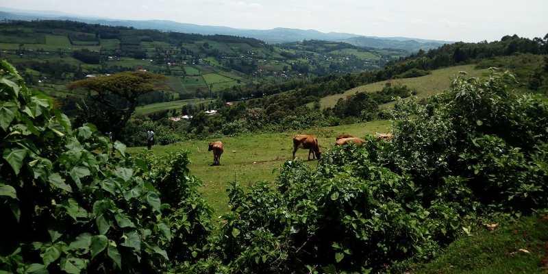 Things To Know Before Visiting Rural Kenya