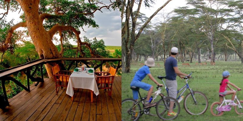 List Of The Best Out Of Town Places For Family Safari in Kenya