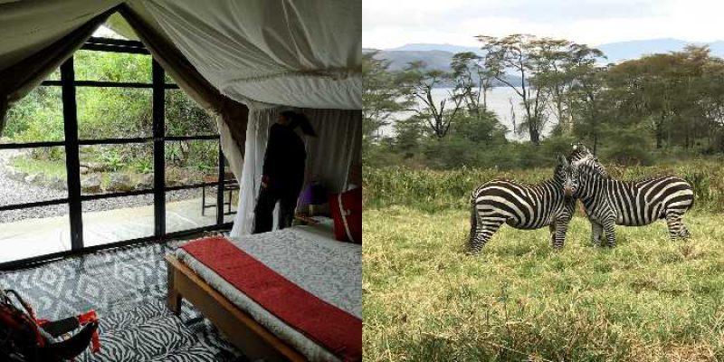 Punda Milias Camp Nakuru: Experiencing Nakuru Afresh