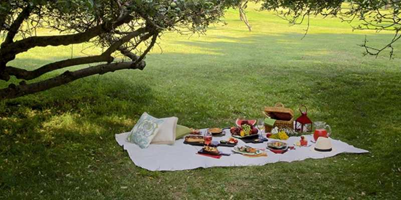 4 Amazing Picnic Accessories to Consider for Your Next Outing