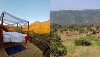 Il Ngwesi Conservancy- Another Laikipia Treasure
