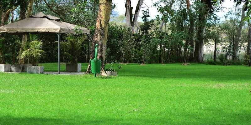 Spots In Nakuru to Consider for Your Garden Wedding