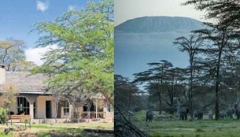 Kimana Sanctuary: A Blend Of Conservation And Relaxation
