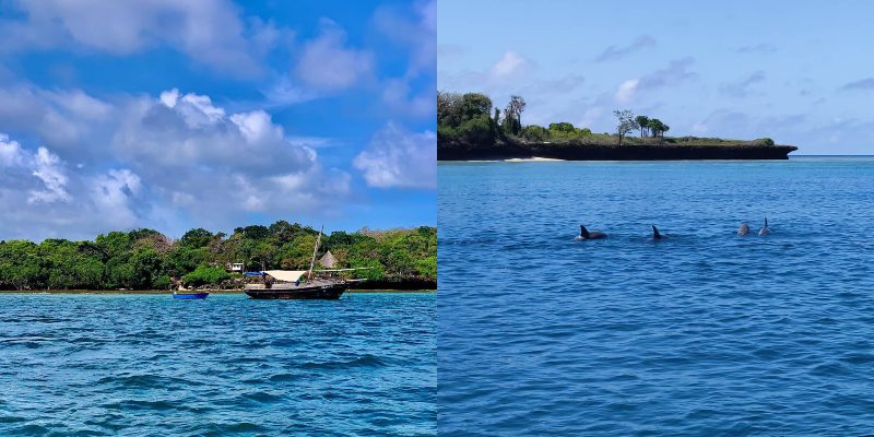 Things To Do At Wasini Island