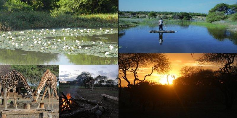 Unraveling Nguuni Nature Sanctuary