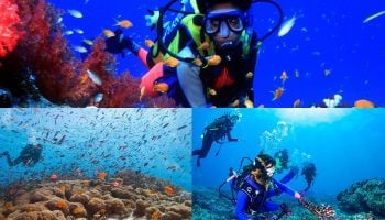 Where To Learn Scuba Diving In Kenya