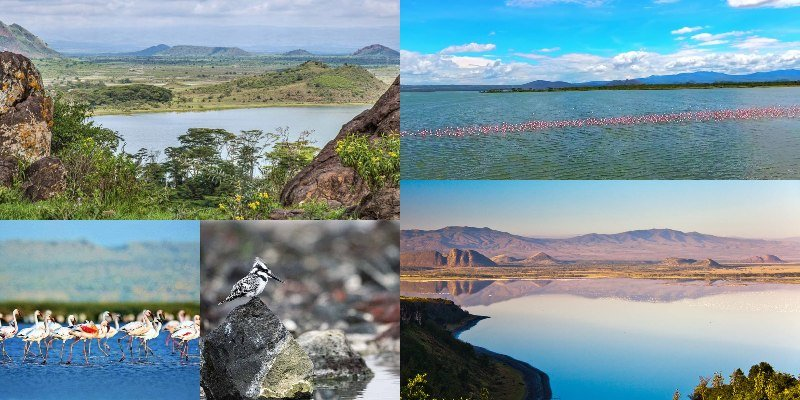 Fascinating Facts About Lake Elementaita