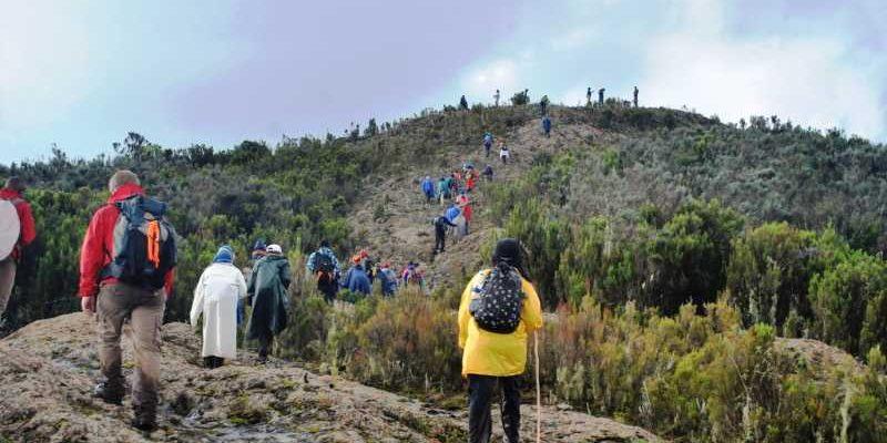 What You Need to Know Before Hiking Mt Kipipiri