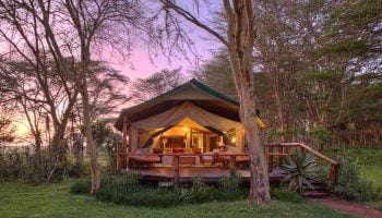 Why You Should Book A Stay At Sirikoi Lodge Laikipia